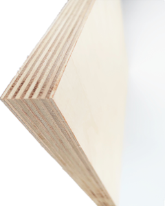 Birch